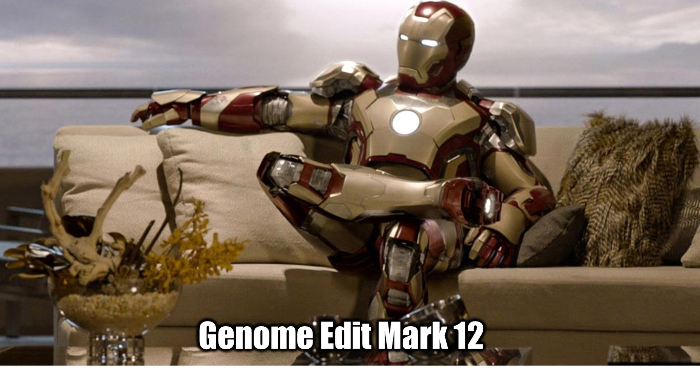 ironmanedit